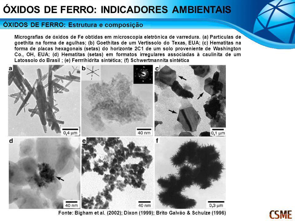 ÓXIDOS DE FERRO: Estrutura e composição Micrografias de óxidos de Fe obtidas em microscopia eletrônica de varredura. (a) Partículas de goethita na for