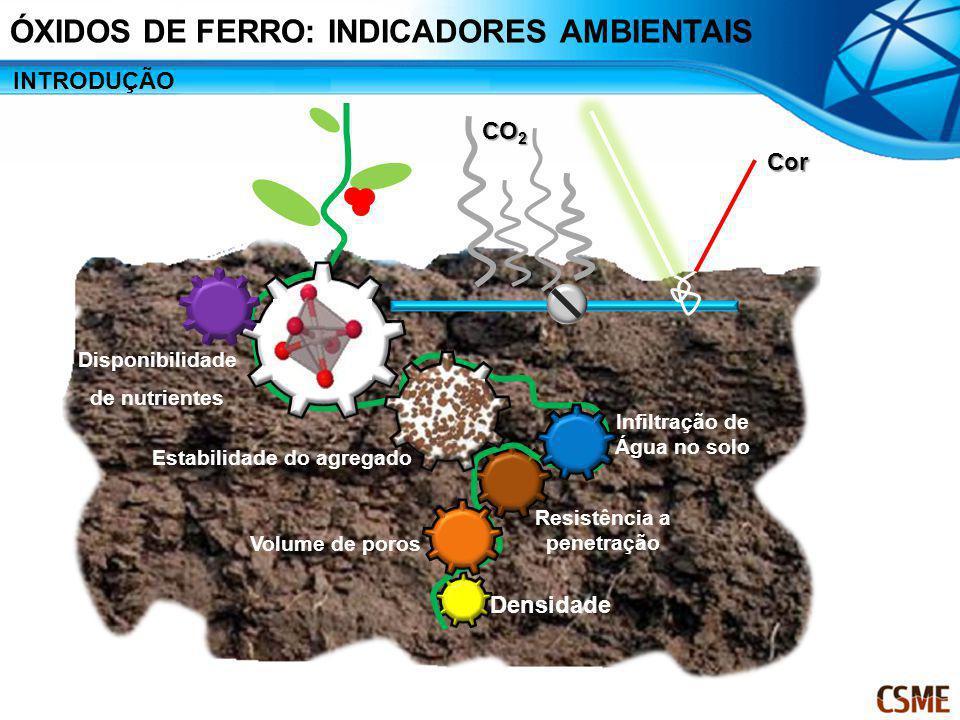 Estabilidade do agregado Volume de poros Densidade Infiltração de Água no solo Resistência a penetração Disponibilidade de nutrientes CO 2 Cor INTRODU