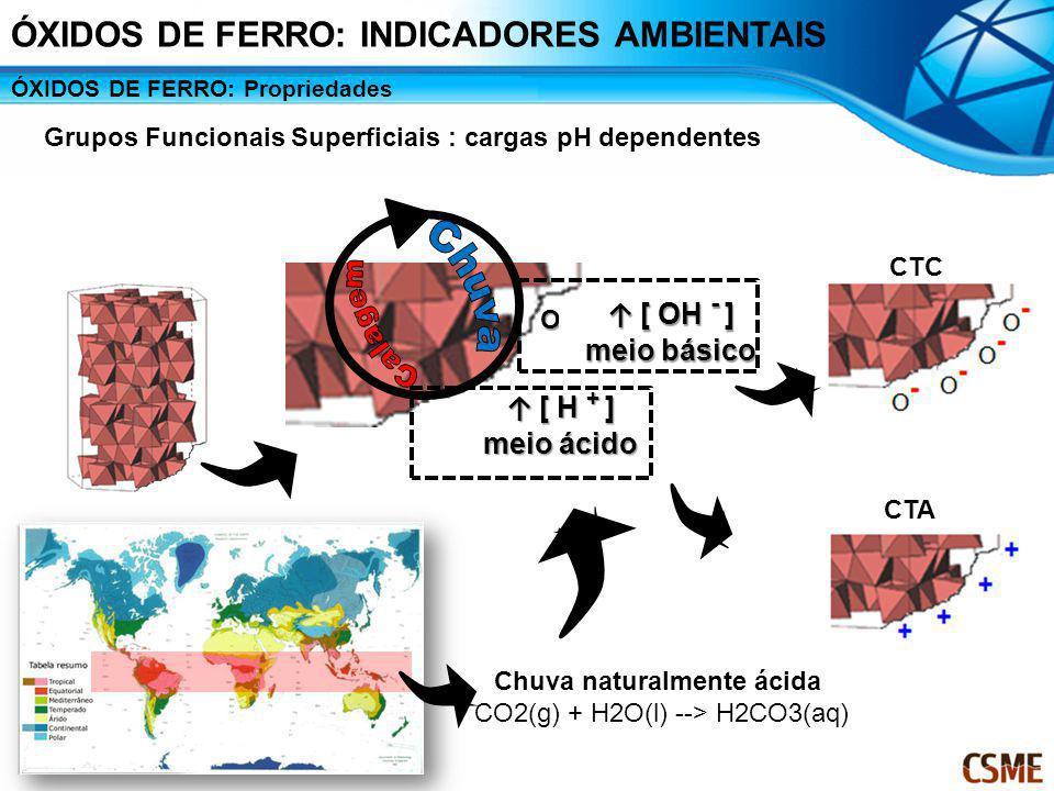 ÓXIDOS DE FERRO: Propriedades Grupos Funcionais Superficiais : cargas pH dependentes OH OH [ OH - ] [ OH - ] meio básico [ H + ] [ H + ] meio ácido CT