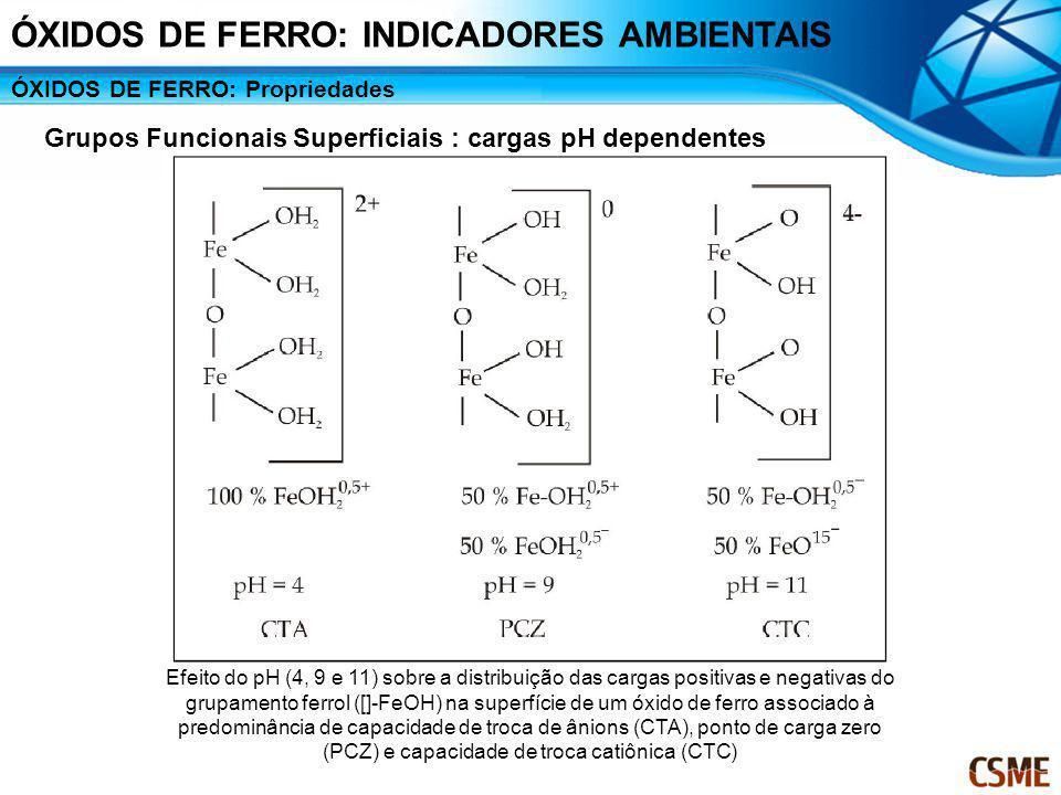 ÓXIDOS DE FERRO: Propriedades Grupos Funcionais Superficiais : cargas pH dependentes Efeito do pH (4, 9 e 11) sobre a distribuição das cargas positiva