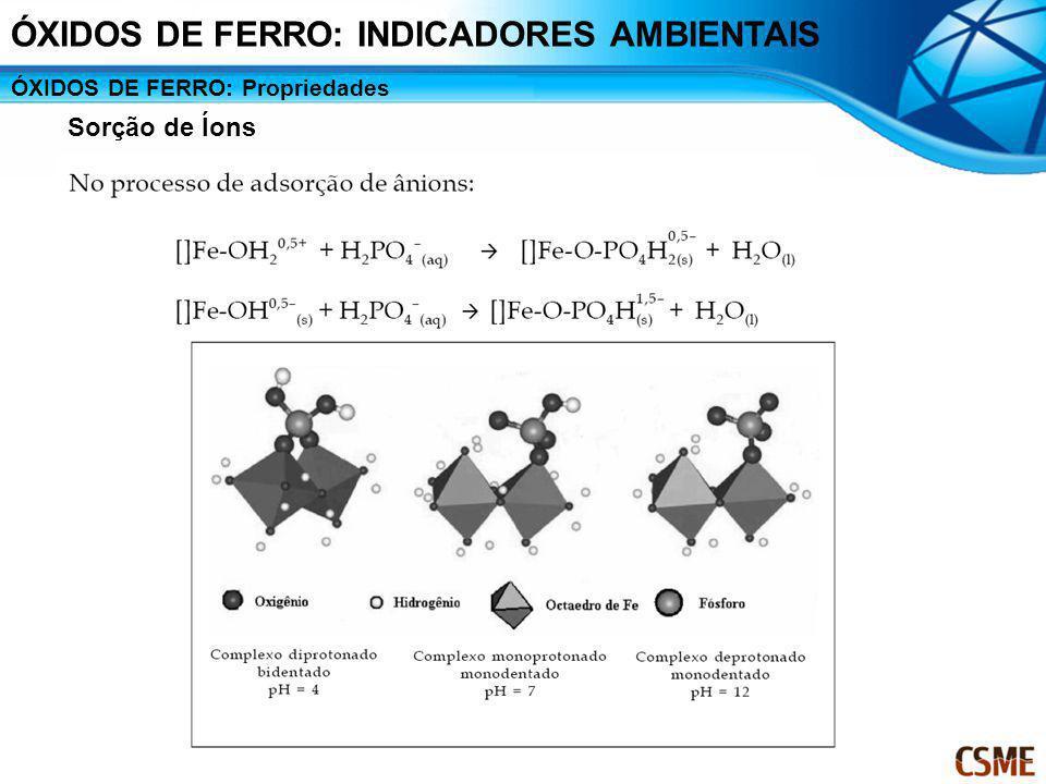 ÓXIDOS DE FERRO: Propriedades Sorção de Íons ÓXIDOS DE FERRO: INDICADORES AMBIENTAIS
