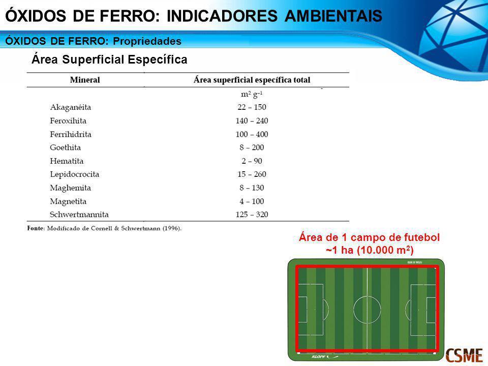 ÓXIDOS DE FERRO: Propriedades Área Superficial Específica Área de 1 campo de futebol ~1 ha (10.000 m 2 ) 64156 50200 15067 96104 44227 12381 61164 482