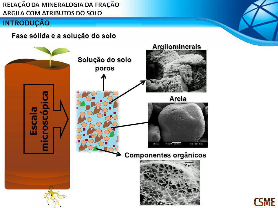 Fase líquida Solução do solo Fase sólida Troca iônica DessorçãoDissoluçãoMineralização AdsorçãoPrecipitação volatilização difusão Fase gasosa Lençol freático MicrorganismosPlantas Processos de transferência de elementos químicos entre as fases do solo INTRODUÇÃO RELAÇÃO DA MINERALOGIA DA FRAÇÃO ARGILA COM ATRIBUTOS DO SOLO
