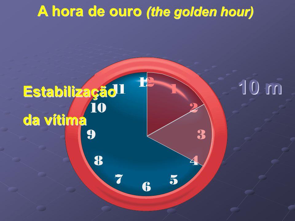 A hora de ouro (the golden hour) Estabilização da vítima 10 m