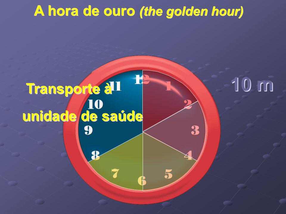 A hora de ouro (the golden hour) Transporte à unidade de saúde 10 m