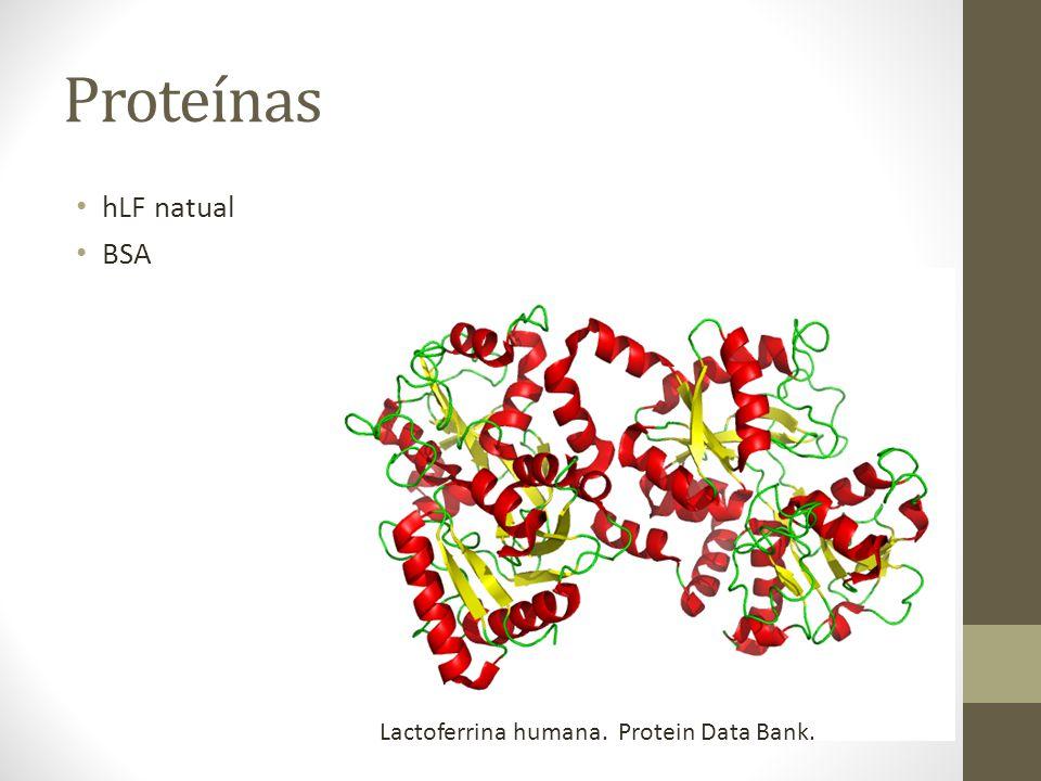 Proteínas hLF natual BSA Lactoferrina humana. Protein Data Bank.