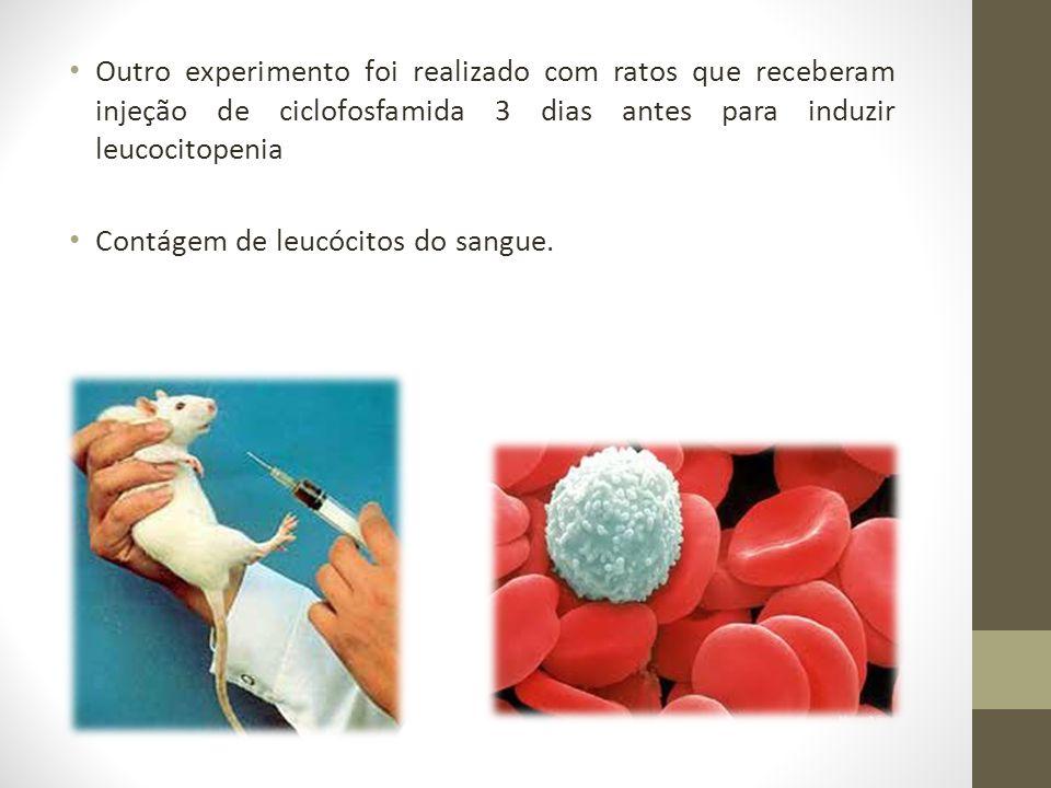 Outro experimento foi realizado com ratos que receberam injeção de ciclofosfamida 3 dias antes para induzir leucocitopenia Contágem de leucócitos do s