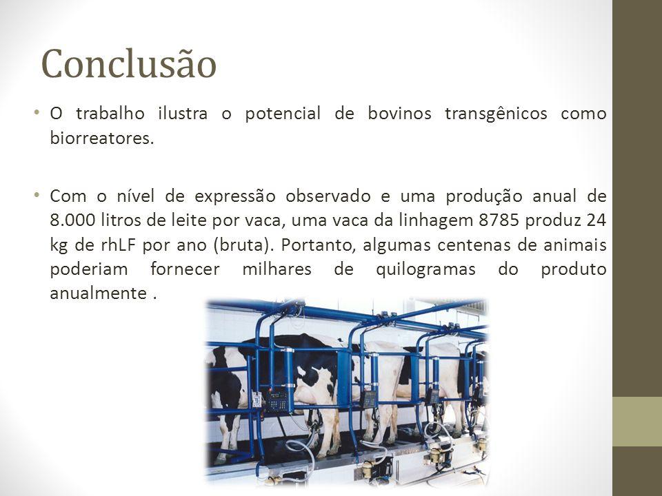 Conclusão O trabalho ilustra o potencial de bovinos transgênicos como biorreatores. Com o nível de expressão observado e uma produção anual de 8.000 l
