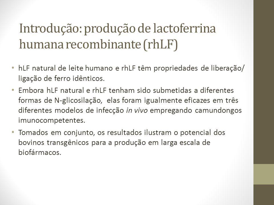 Introdução: produção de lactoferrina humana recombinante (rhLF) hLF natural de leite humano e rhLF têm propriedades de liberação/ ligação de ferro idê