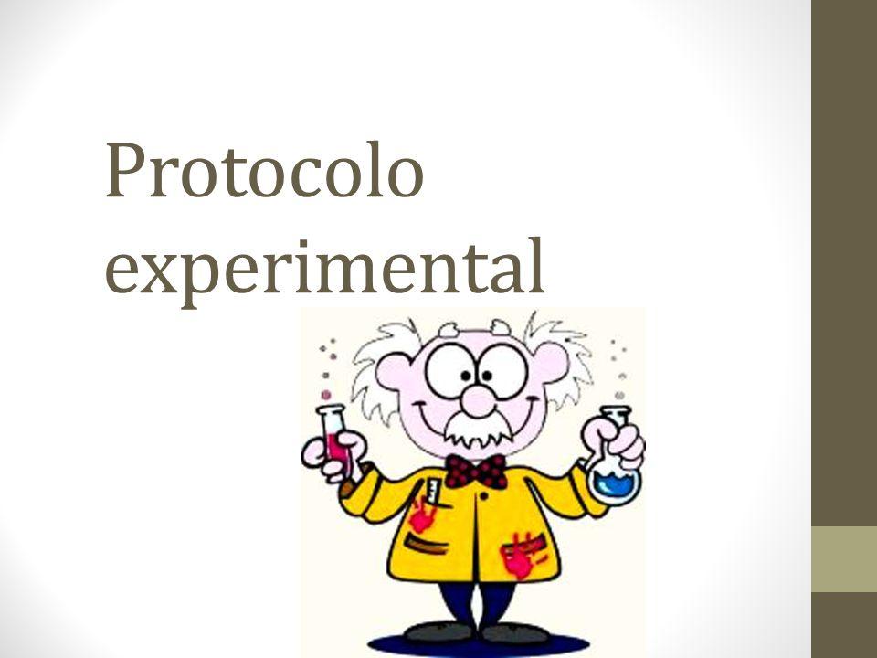 Composição de monossacarídeos As proteínas foram liofilizadas, neutralizadas, centrifugadas e o sobrenadante foi evaporado e seco.