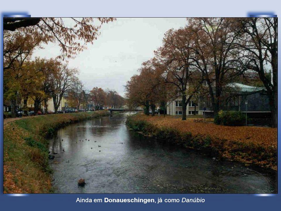 A junção do Brigach (à esquerda) com o Breg (à direita) que origina o Danúbio (ao centro) Em Donaueschingen (Alemanha)