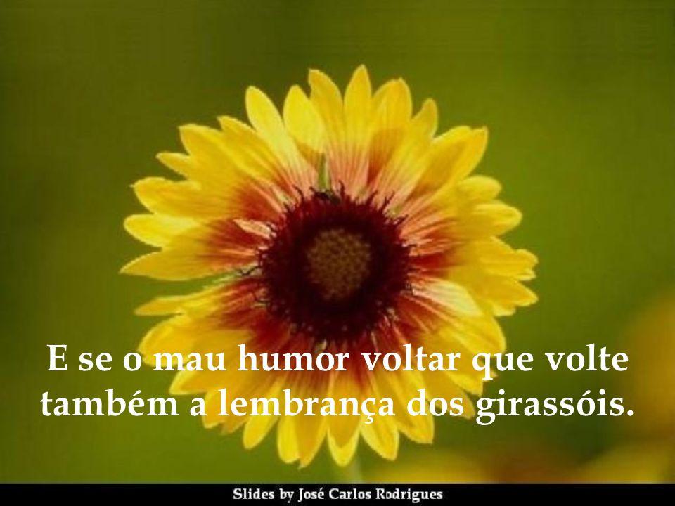 Apreciar o amor que alguém em um determinado momento dirige a você. Apreciar um sorriso luminoso de alegria de alguém que você gosta. Apreciar uma pal