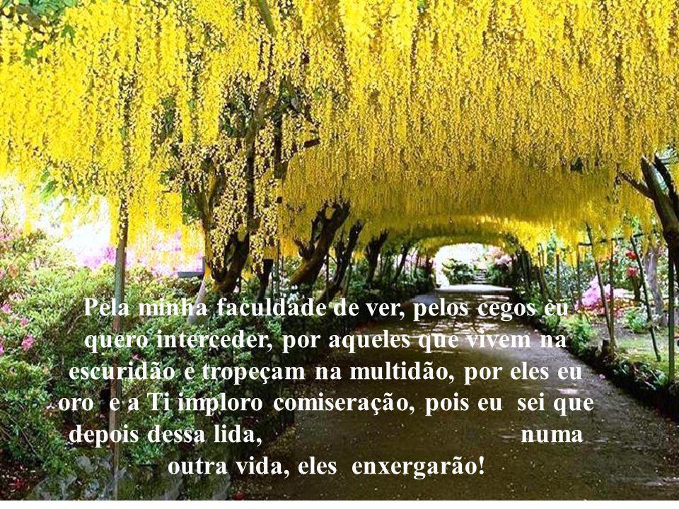 Abraço de Gratidão Prof.Luiz Antonio Silva www.pharol-rh.com.br Porque eu tenho a Ti.