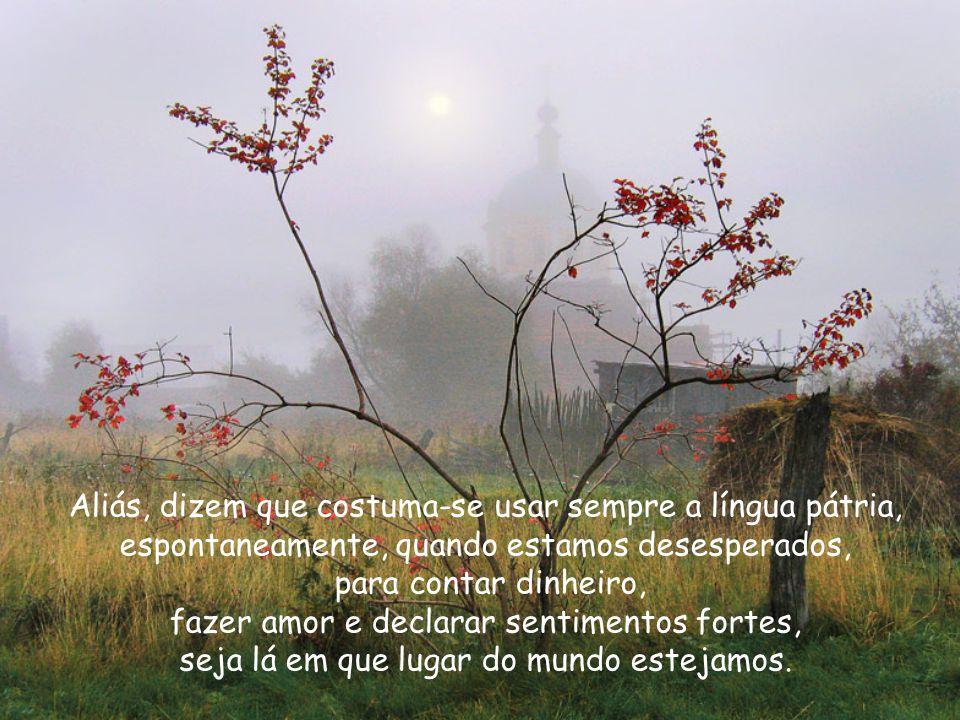 mas que minha saudade, por eu ter nascido brasileiro, só fala português, embora, lá no fundo, possa ser poliglota.
