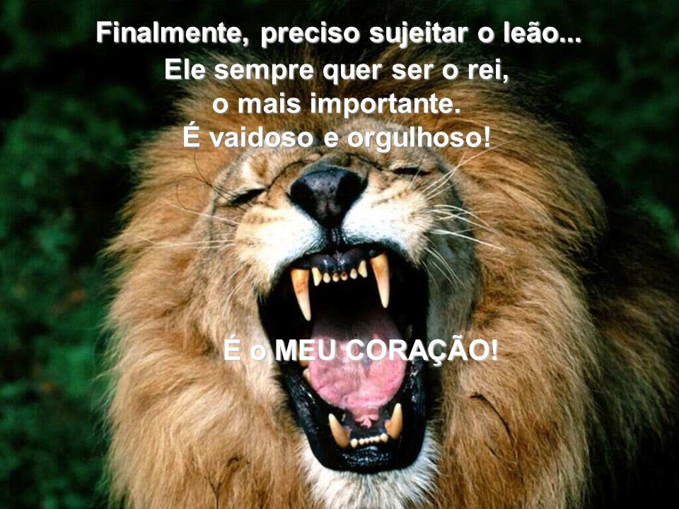 Finalmente, preciso sujeitar o leão...Ele sempre quer ser o rei, o mais importante.