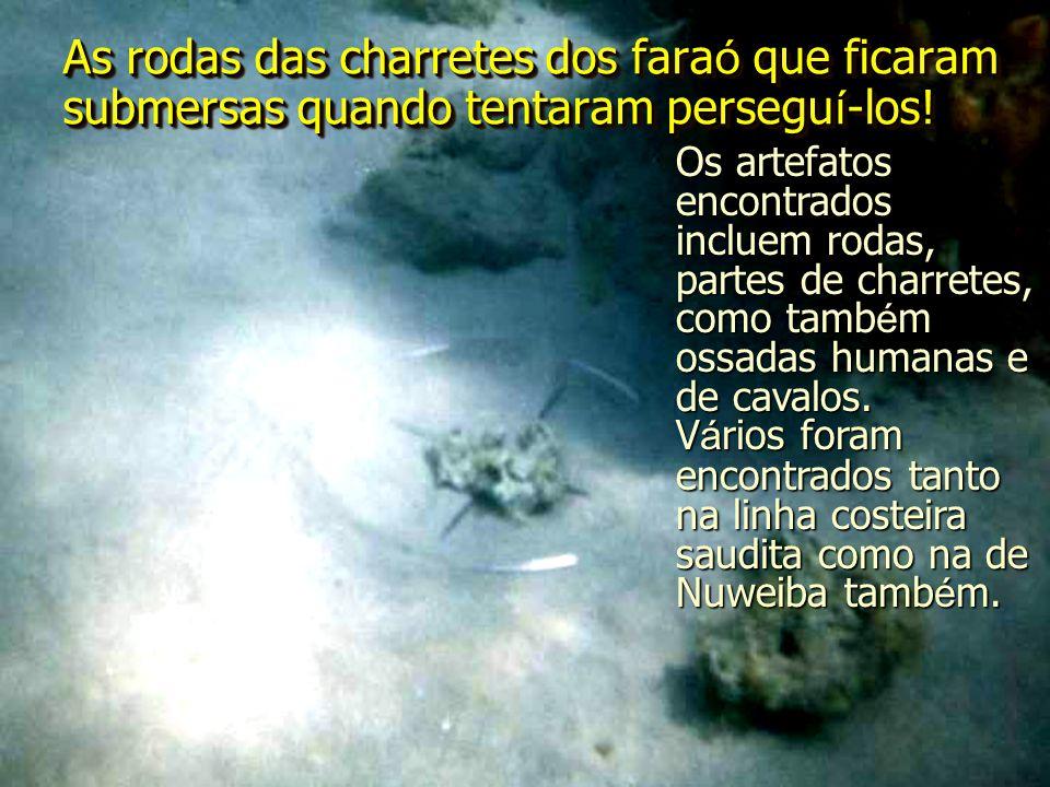 As rodas das charretes dos fara ó que ficaram submersas quando tentaram persegu í -los! Os artefatos encontrados incluem rodas, partes de charretes, c