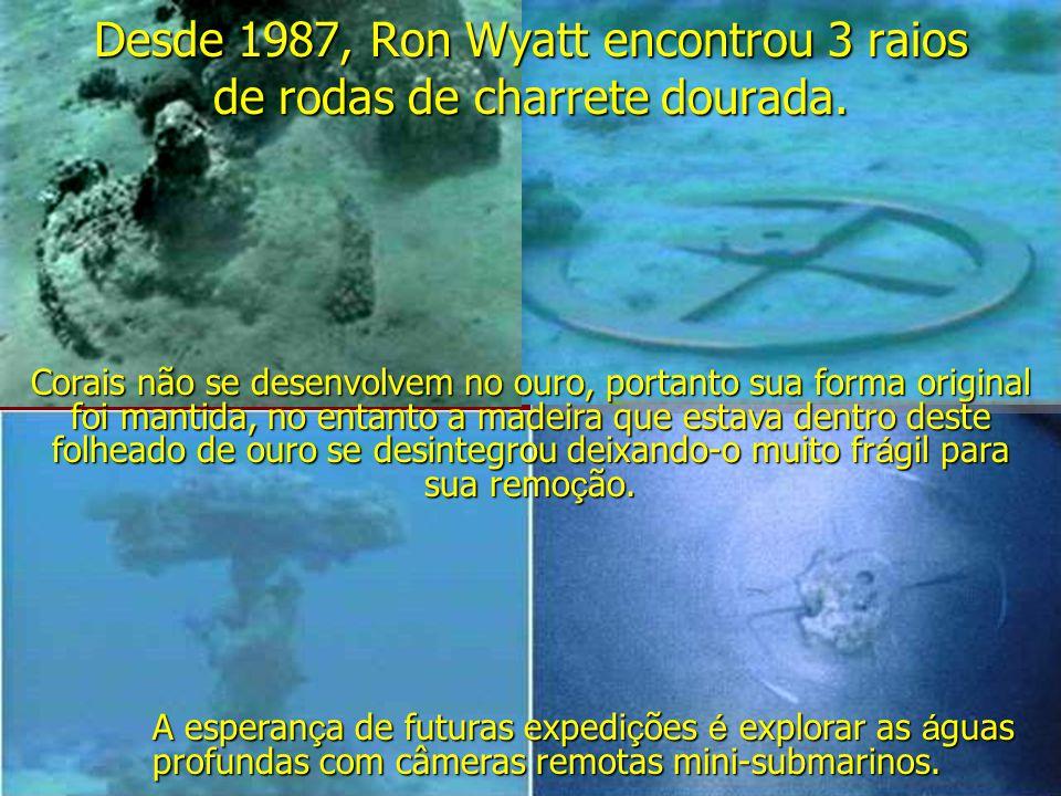 Desde 1987, Ron Wyatt encontrou 3 raios de rodas de charrete dourada. Corais não se desenvolvem no ouro, portanto sua forma original foi mantida, no e