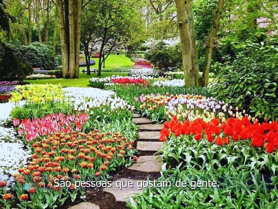 Seja um jardim, a doar beleza, e espalhar alegrias. Autoria desconhecida