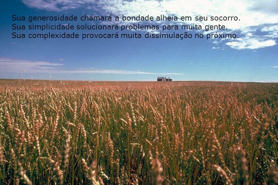 Semeadura 011 André Luiz