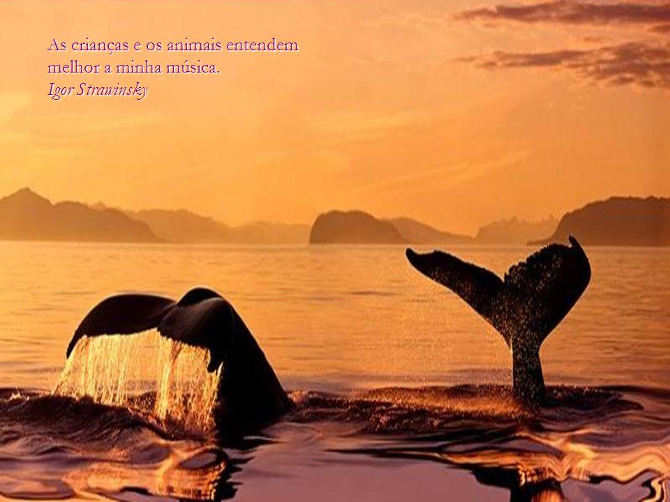 O amor por todas as criaturas vivas é o mais nobre atributo do homem. Charles Darwin Charles Darwin