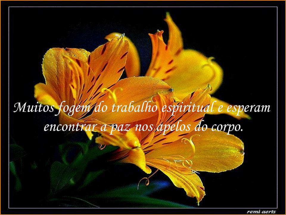 Texto: O trabalho espiritual Autor: Luiz Gonzaga Pinheiro Música: Edelweiss
