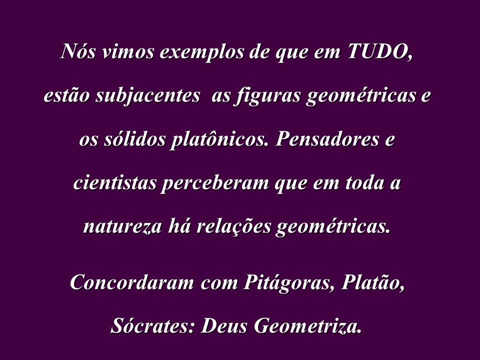 Nós vimos exemplos de que em TUDO, estão subjacentes as figuras geométricas e os sólidos platônicos.