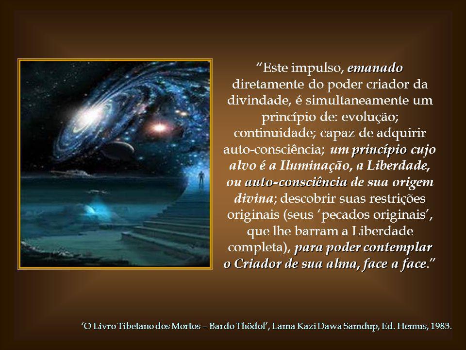 forma A forma humana ( mas não sua natureza divina ) é uma herança direta dos reinos sub-humanos. evoluiu, guiada pelo fluxo contínuo da água da vida