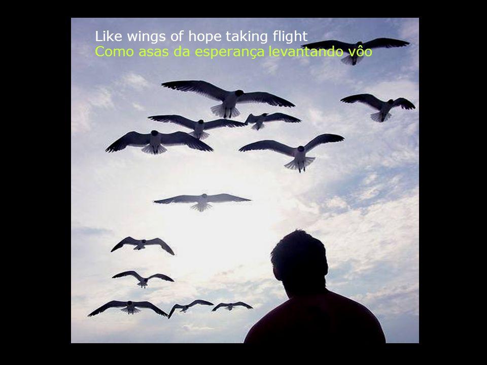 Uma luz cravada em cada alma Como asas da esperança levantando vôo A beam that close within every soul Like wings of hope taking flight
