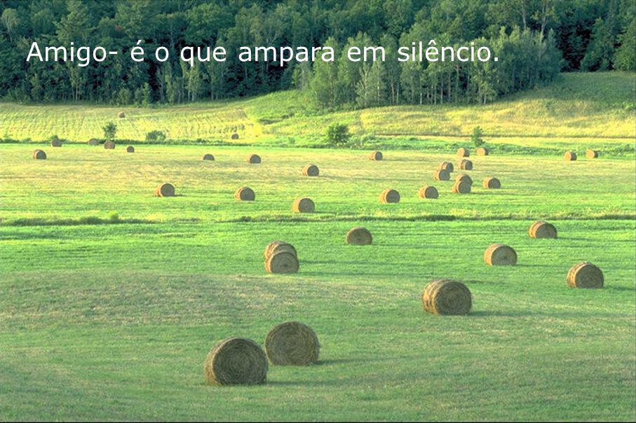 1 01 Amigo- é o que ampara em silêncio.