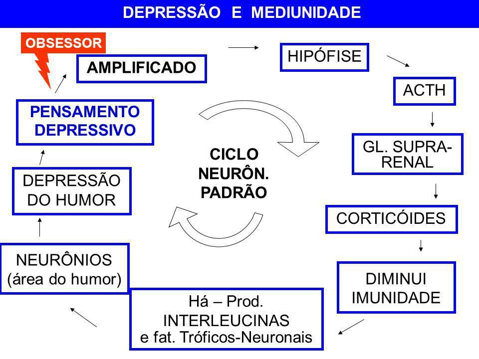 AMPLIFICADO HIPÓFISE ACTH NEURÔNIOS (área do humor) DEPRESSÃO DO HUMOR GL. SUPRA- RENAL Há – Prod. INTERLEUCINAS e fat. Tróficos-Neuronais DIMINUI IMU
