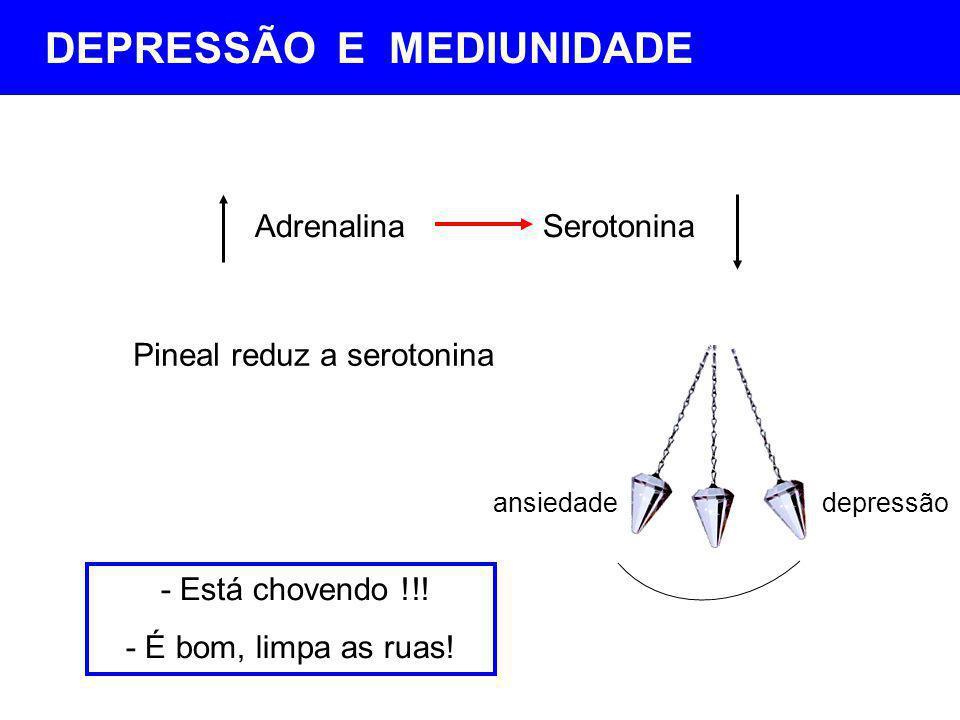 AdrenalinaSerotonina Pineal reduz a serotonina ansiedadedepressão - Está chovendo !!! - É bom, limpa as ruas! DEPRESSÃO E MEDIUNIDADE