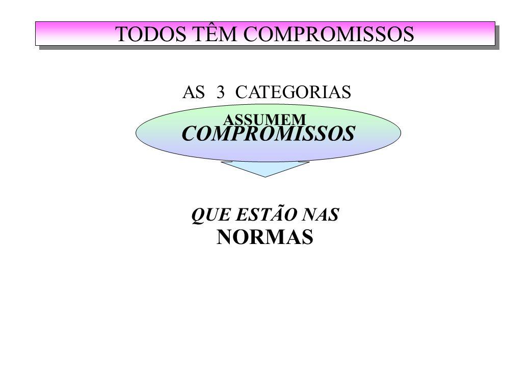 COMPROMISSOS QUE ESTÃO NAS NORMAS AS 3 CATEGORIAS ASSUMEM TODOS TÊM COMPROMISSOS