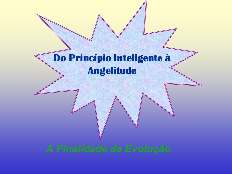 A Finalidade da Evolução Do Princípio Inteligente à Angelitude