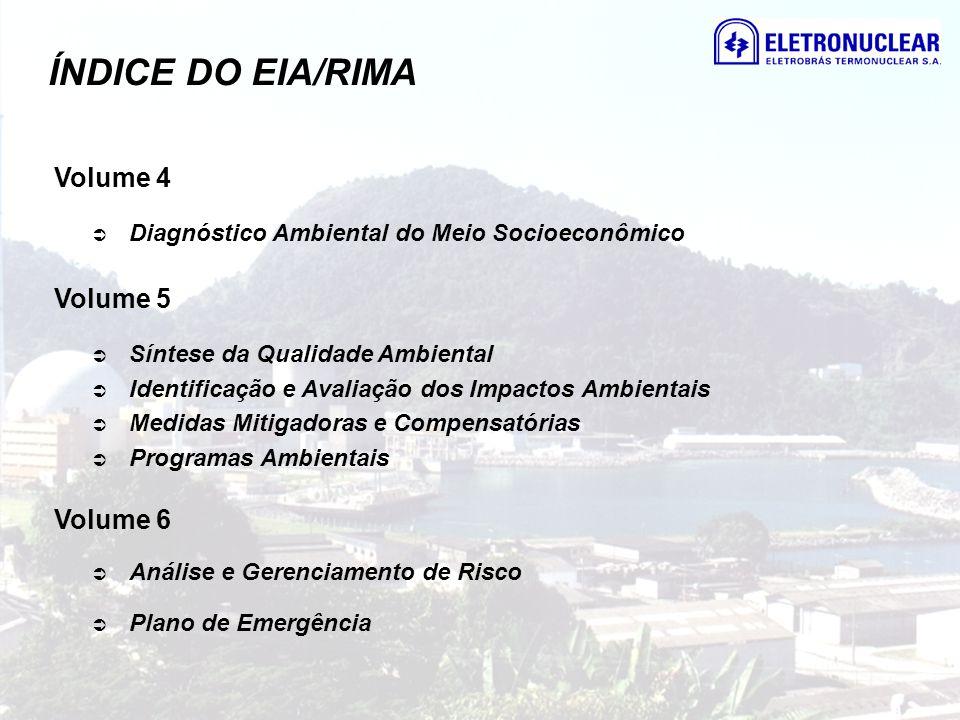 ÍNDICE DO EIA/RIMA Volume 4 Diagnóstico Ambiental do Meio Socioeconômico Volume 5 Síntese da Qualidade Ambiental Identificação e Avaliação dos Impacto