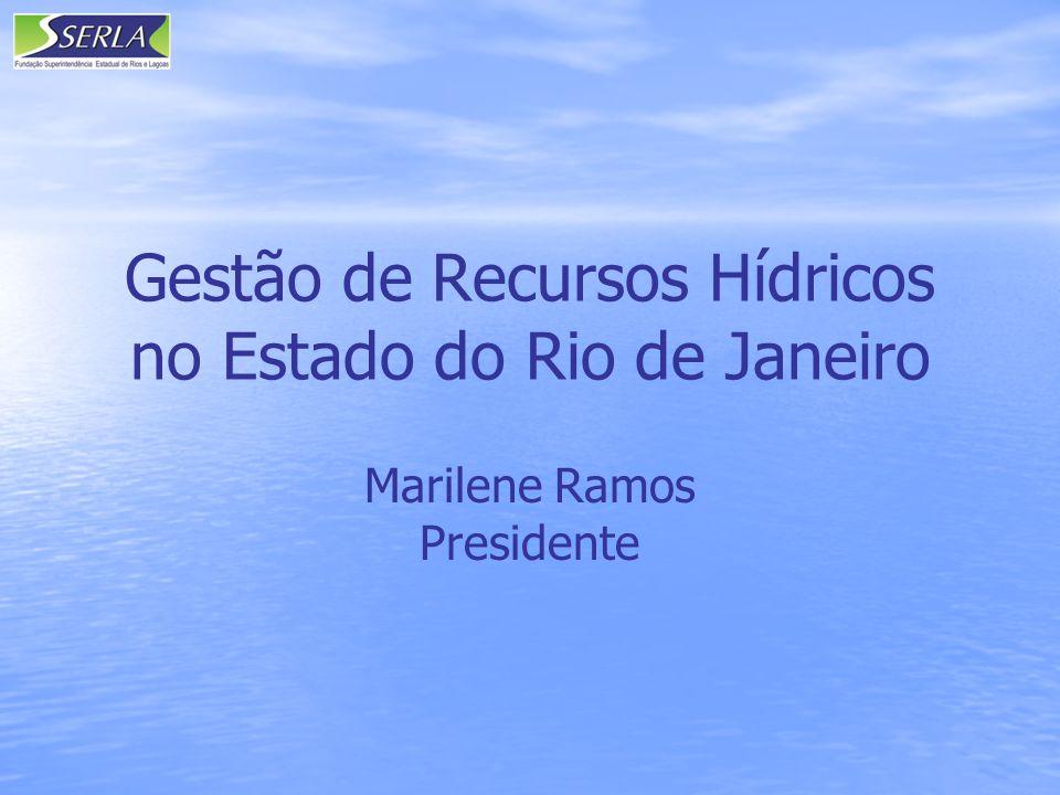 Gestão de Recursos Hídricos no Estado do Rio de Janeiro Marilene Ramos Presidente