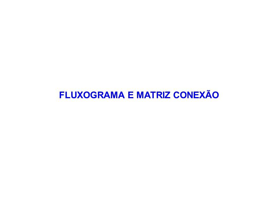 FLUXOGRAMA E MATRIZ CONEXÃO