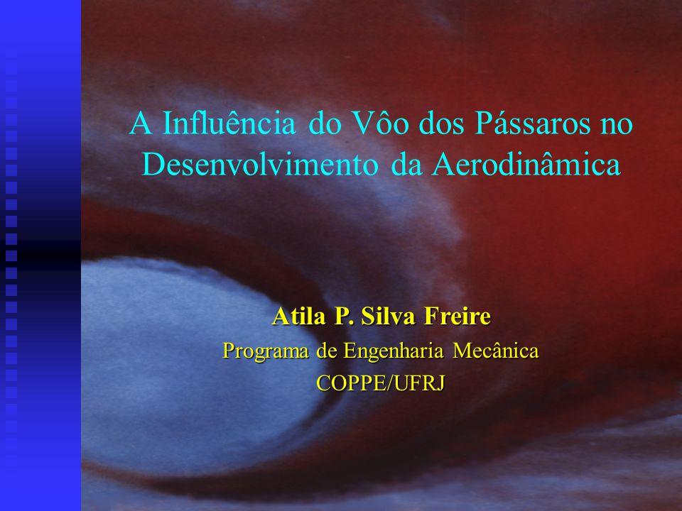 A Influência do Vôo dos Pássaros no Desenvolvimento da Aerodinâmica Atila P. Silva Freire Programa de Engenharia Mecânica COPPE/UFRJ
