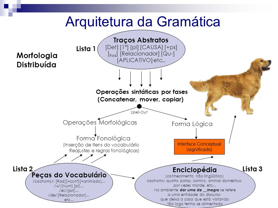 Arquitetura da Gramática Traços Abstratos [Det] [1ª] [pl] [CAUSA] [+ps] [ Raiz ] [Relacionador] [Qu-] [APLICATIVO] etc..