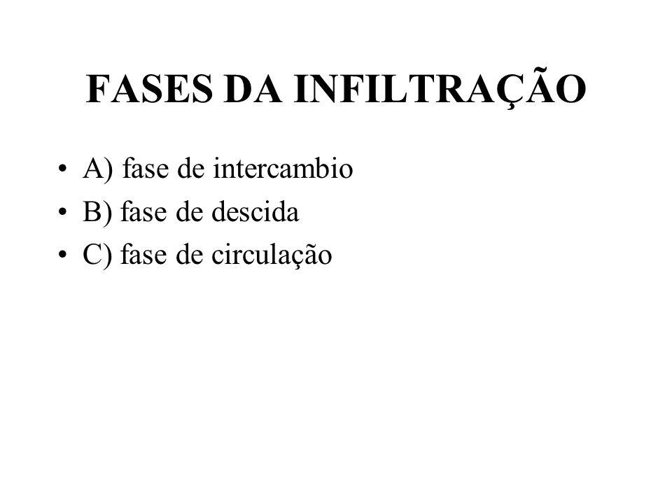 FASES DA INFILTRAÇÃO A) fase de intercambio B) fase de descida C) fase de circulação