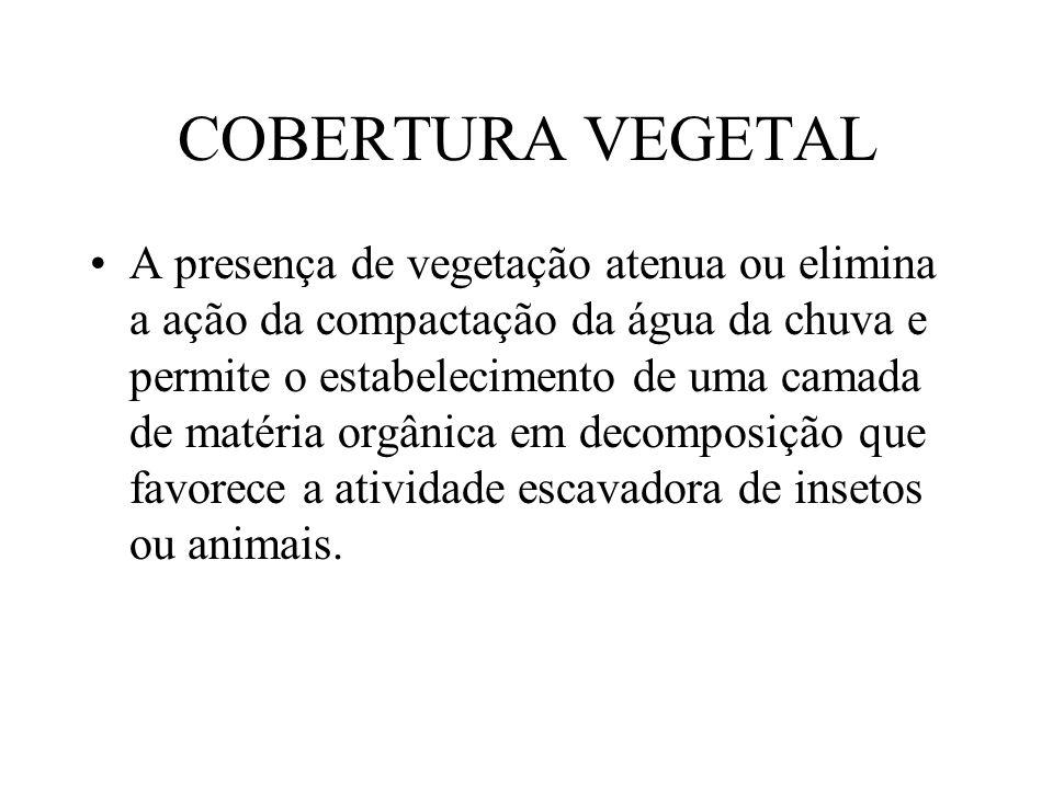 COBERTURA VEGETAL A presença de vegetação atenua ou elimina a ação da compactação da água da chuva e permite o estabelecimento de uma camada de matéri