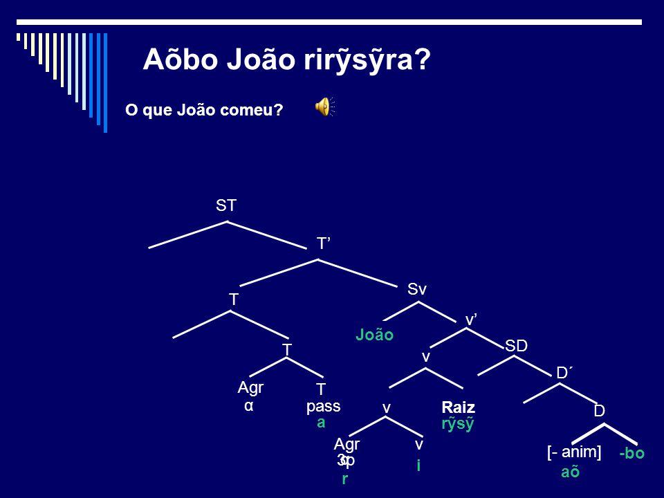 8 Lugar (de) QU- Tiribibo tetata kaa caneta.
