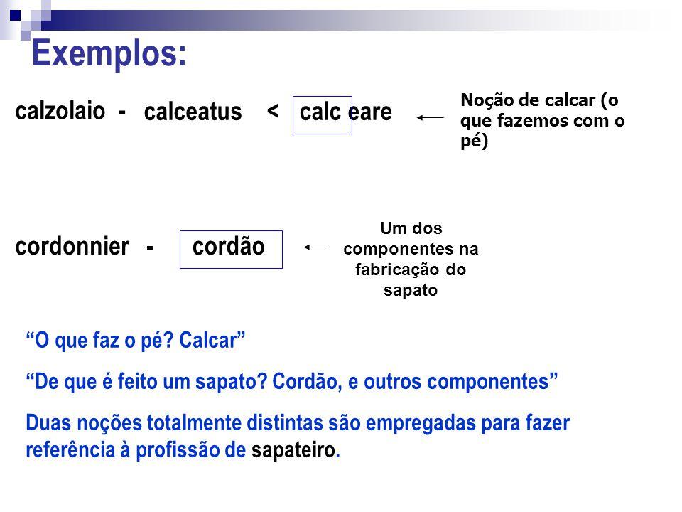 Exemplos: calzolaio - calceatus <calc eare cordonnier -cordão Um dos componentes na fabricação do sapato Noção de calcar (o que fazemos com o pé) O qu