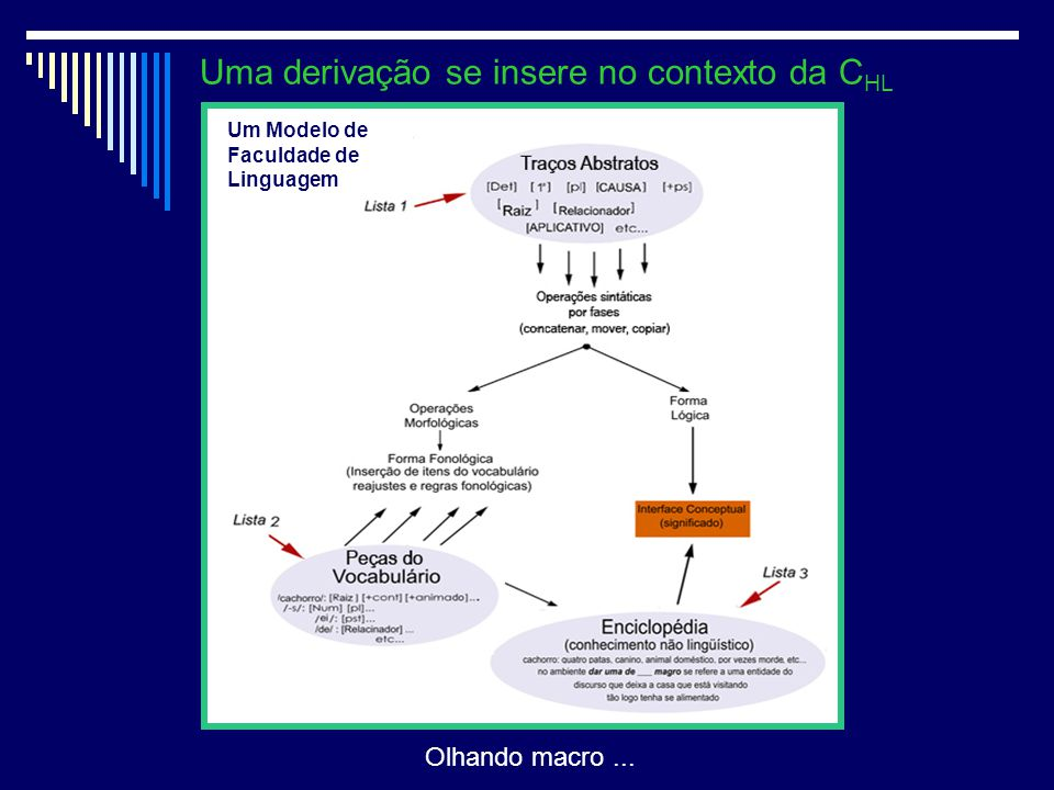 2 Uma derivação se insere no contexto da C HL Um Modelo de Faculdade de Linguagem Olhando macro...