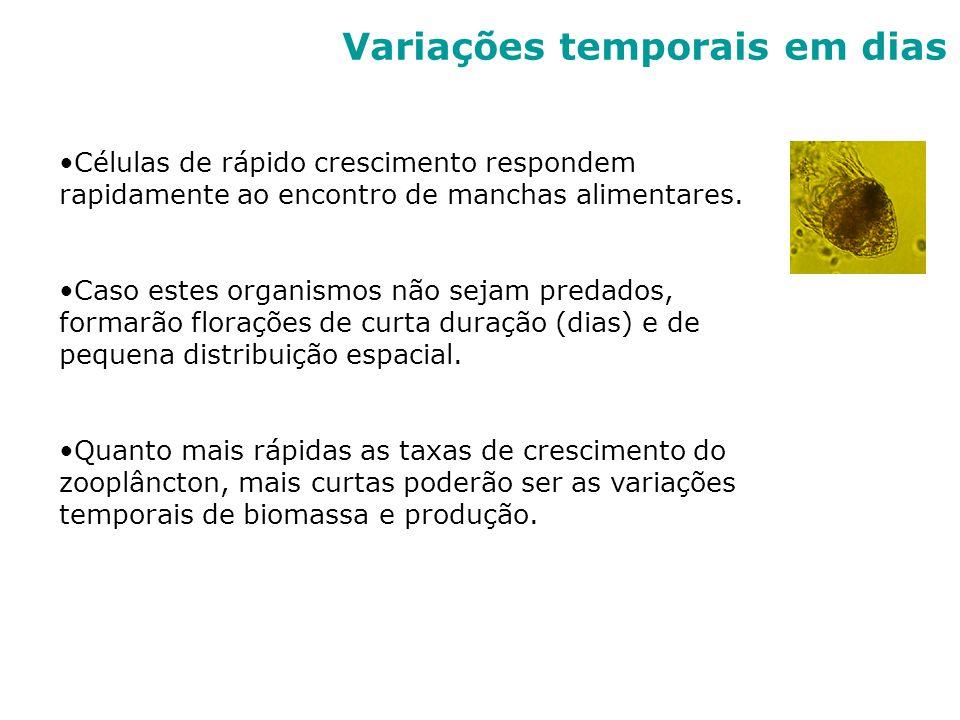 Variações temporais em dias Células de rápido crescimento respondem rapidamente ao encontro de manchas alimentares. Caso estes organismos não sejam pr