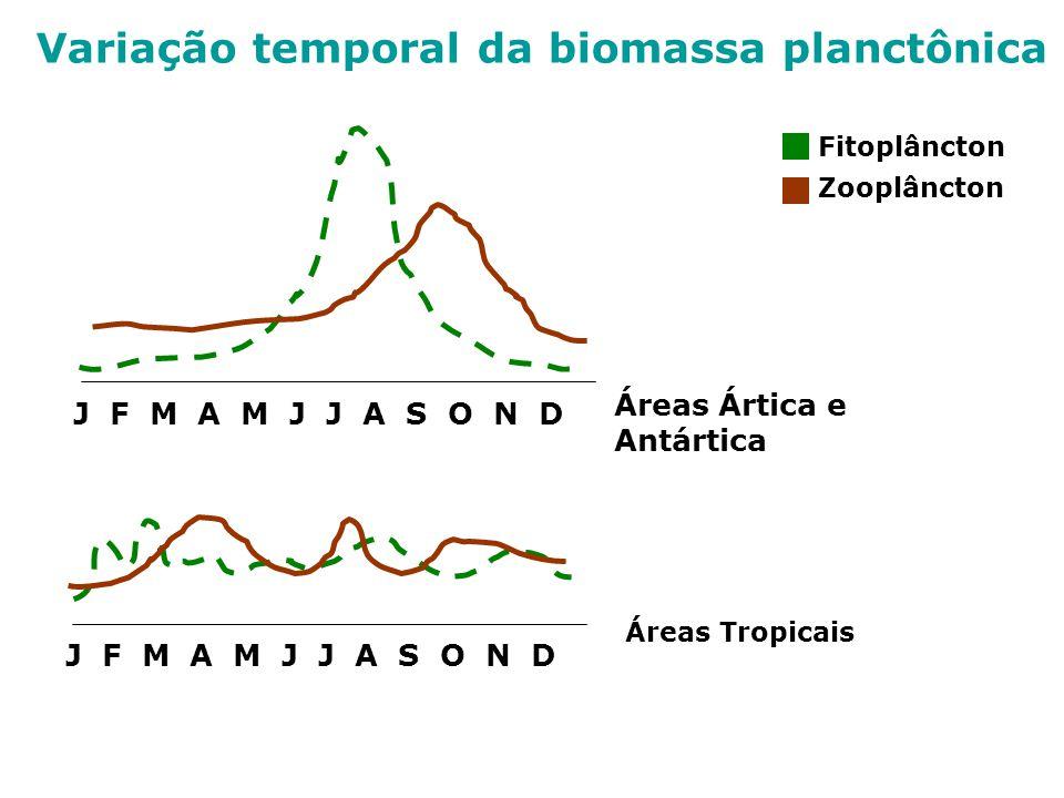 Fitoplâncton Zooplâncton J F M A M J J A S O N D Áreas Ártica e Antártica J F M A M J J A S O N D Áreas Tropicais Variação temporal da biomassa planct