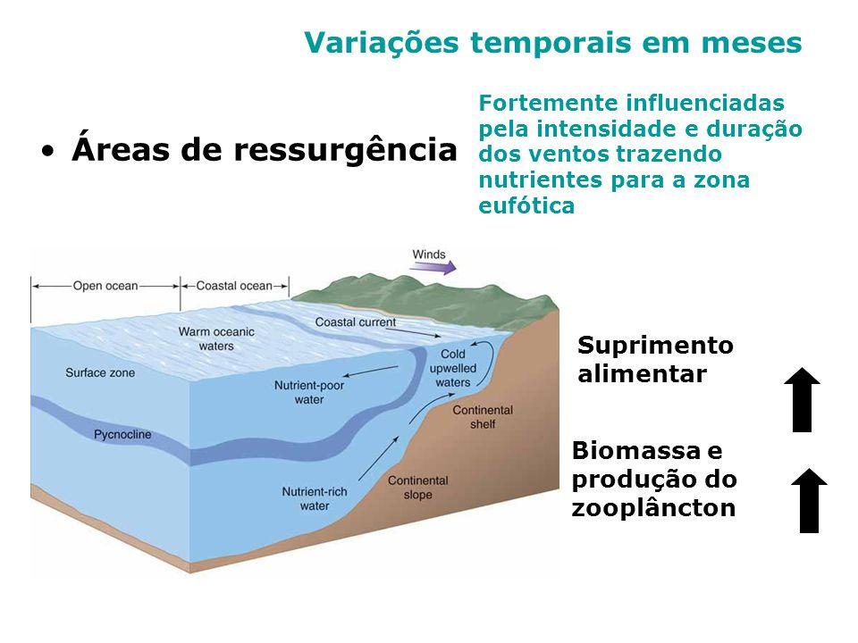 Variações temporais em meses Áreas de ressurgência Fortemente influenciadas pela intensidade e duração dos ventos trazendo nutrientes para a zona eufó