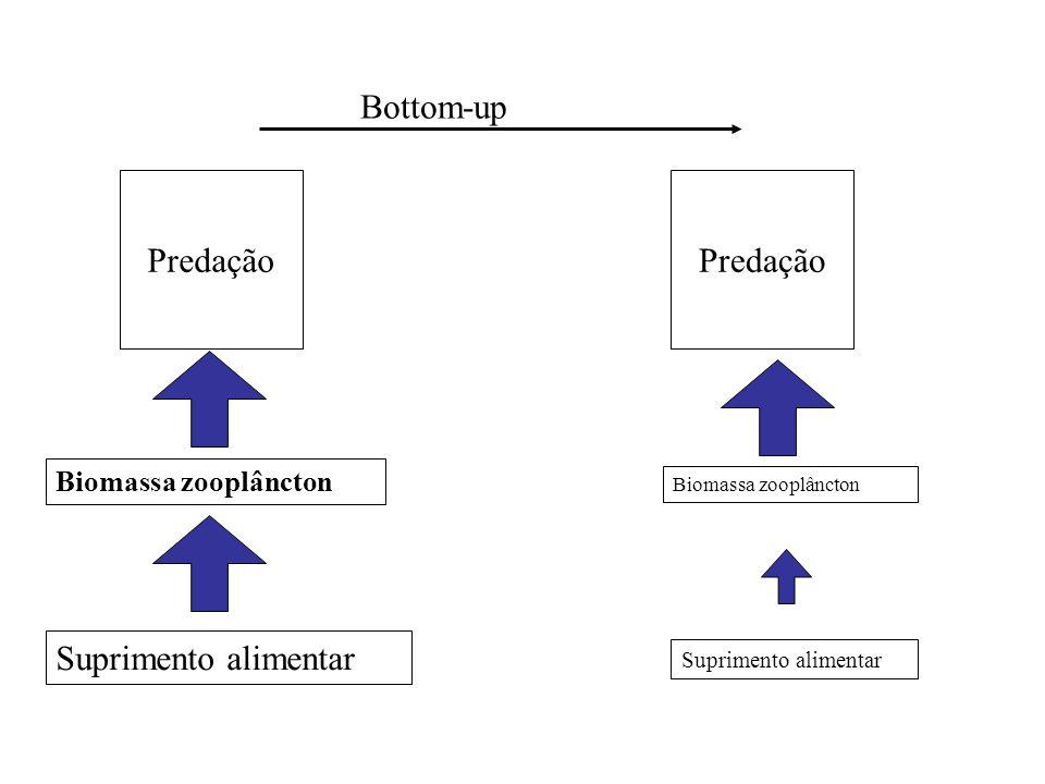 Predação Biomassa zooplâncton Suprimento alimentar Bottom-up Suprimento alimentar Predação Biomassa zooplâncton