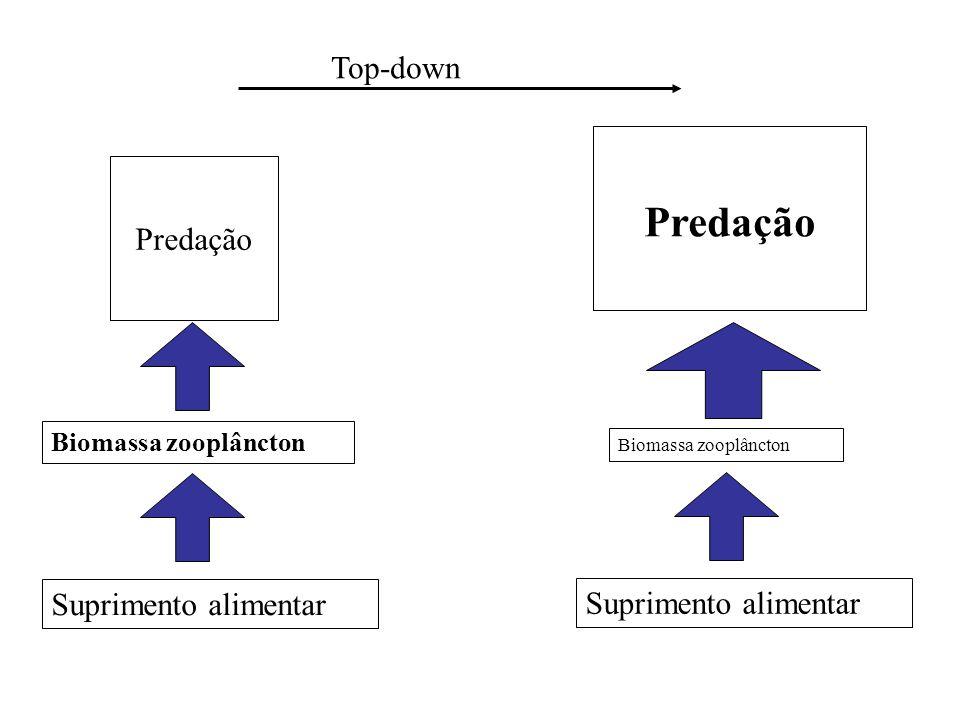 Predação Biomassa zooplâncton Top-down Suprimento alimentar Predação Biomassa zooplâncton Suprimento alimentar