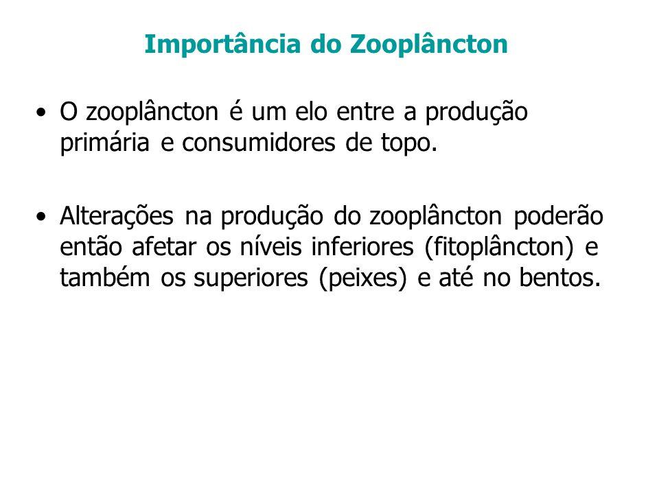 O zooplâncton é um elo entre a produção primária e consumidores de topo. Alterações na produção do zooplâncton poderão então afetar os níveis inferior