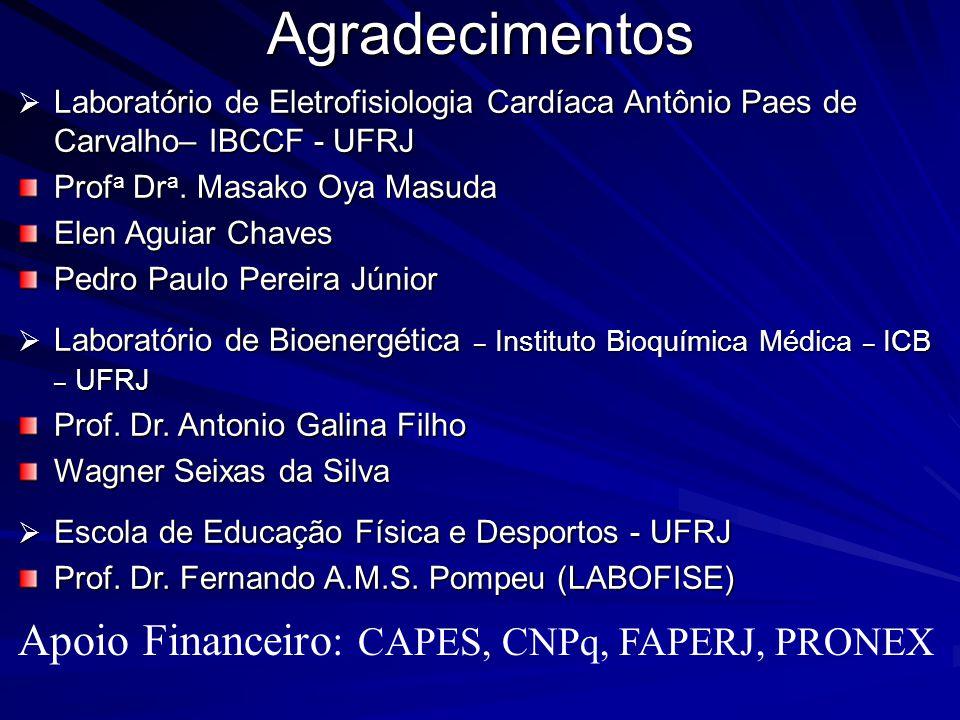 Agradecimentos Laboratório de Eletrofisiologia Cardíaca Antônio Paes de Carvalho– IBCCF - UFRJ Laboratório de Eletrofisiologia Cardíaca Antônio Paes d